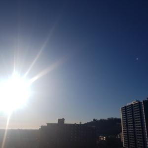 外出自粛 ~12日目~ あー体が日光浴したがってる。