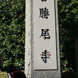 紅葉狩り~勝尾寺~