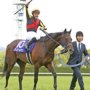 競馬 エリザベス女王杯~マイルCS~ジャパンC