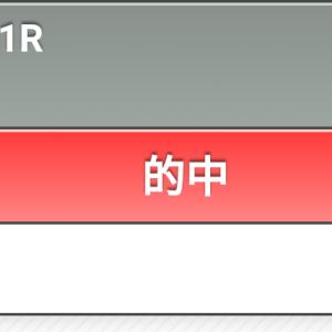 競馬 日経新春杯 ◎モズベッロ→馬単本線的中!