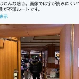 神戸大感染症内科教授の岩田健太郎氏の内偵で、コロナはダイヤモンドでプリンセスみたいな扱いだったのに激昂したのも分かる気がする ― 伏魔殿降臨・厚労省(そのほか)