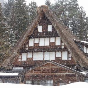 改めて思い出してみると、雪景色の合掌造りを楽しむ贅沢さと相まって、滑走できるというエリアなんだな - タカンボー・たいらスキー場(富山県)