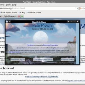 Firefox派生ブラウザーらしいが、最新版はレガシーなアドオンが使えないし、独自レンダリングエンジンの実装だから別物だな ー Pale Moon(PCブラウザー)