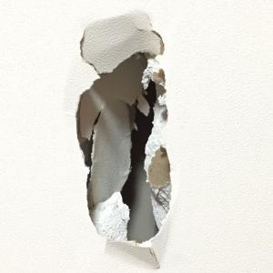 ひまわりと息子がブチ破った壁の修理