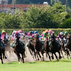 誰でも今すぐオンラインで競馬を楽しむ方法とは?