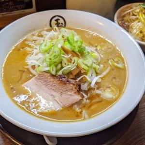 大森 東京煮干三三㐂 濃厚味噌