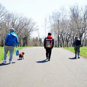 お散歩が嫌いな人のお話。