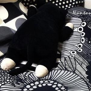 ★床の上にお布団で寝てます( Φ ω Φ ) 【2食380円】