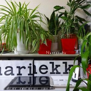 ★marimekkoの手作りボックスが超お気に入りのコーナー【 After 】