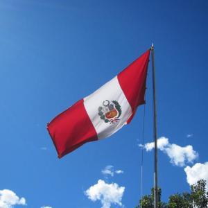 おいしいペルー2015~代々木公園