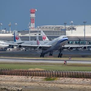 ポイントは梅の花  A340  チャイナエアライン(CI)