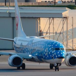 コックピットを照らす  ジンベエジェット  日本トランスオーシャン航空(NU)