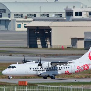 ハイビスカスのアクセント  ATR-42  日本エアコミューター (JC)