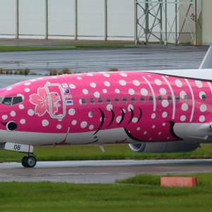 雨上がりの❤マーク  さくらジンベエ  日本トランスオーシャン航空(NU)