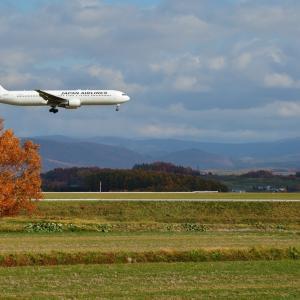 お爺さんとサイコロキャラメル  B767  日本航空(JL)