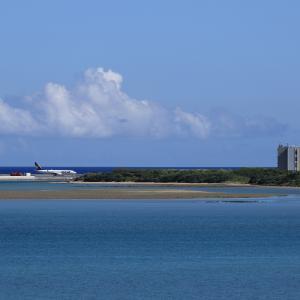 夏雲と新管制塔  B737  スカイマーク(BC)