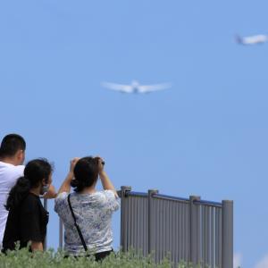 どんな写真が撮れましたか?  那覇空港