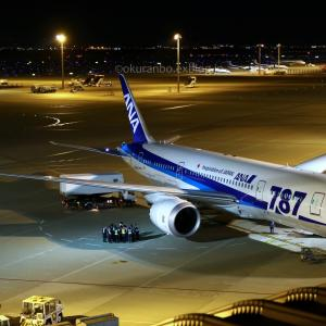 初便の夜  B787  全日空(NH)