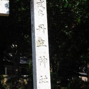余呉町下丹生の丹生神社