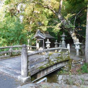 余呉町上丹生の丹生神社