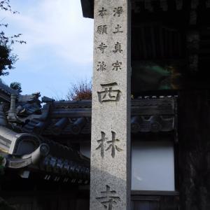 北廻城跡麓に開創した 近藤氏の西林寺