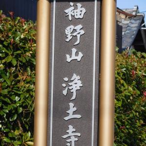 初代桑名藩主 本多忠勝の本廟  浄土寺