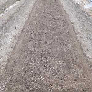 暖冬とは言え「安さんの二月の畑」では