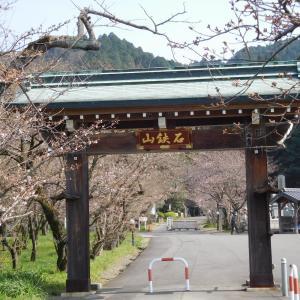 今年は昔の花遍路で堪能しよう 第64番 前神寺
