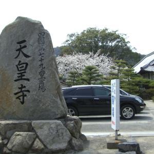 今年は昔の花遍路で堪能しよう 第79番 天皇寺