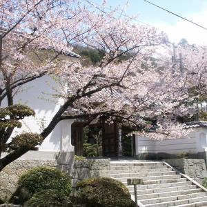 今年は昔の花遍路で堪能しよう 第85番 八栗寺