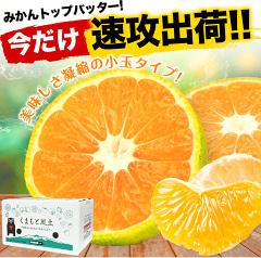 楽天マラソン最終日★小玉みかんに安納芋♡選べるリブニット999円&エアスカートも!