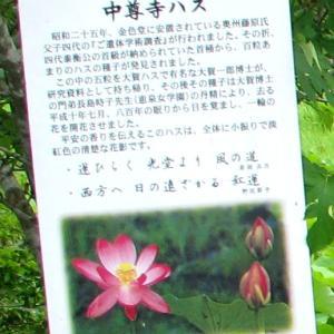 世界遺産「平泉周辺」のお土産に「ごま摺り団子」