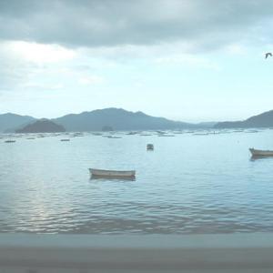 岩手県山田町山田湾の特大サイズ殻付き真牡蠣