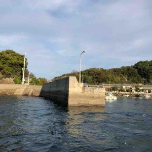 11月10日 二神島 旧波止でフカセ釣りをしました♪