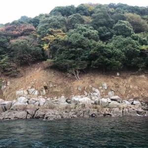 11月24日 大館場島でフカセ釣りをしました♪