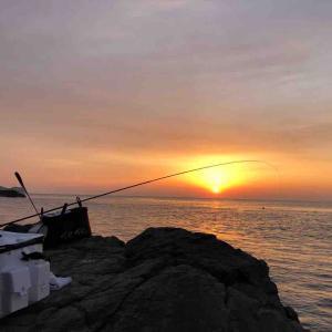 1月12〜14日 宮崎県 北浦でフカセ釣りをしました♪