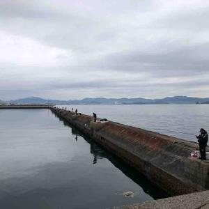 1月19日 広島 木材港でフカセ釣りをしました♪