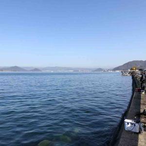3月21日 呉方面 坂でフカセ釣りをしました♪