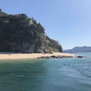 4月5日 笠佐島でフカセ釣りをしました♪