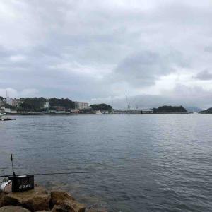 9月12日 呉方面 近場でフカセ釣りをしました♪前半戦