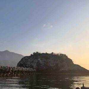 3月6日 山口県 裸島の磯でフカセ釣りをしました♪