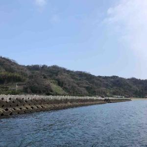 3月14日 愛媛県 中島のテトラでフカセ釣りをしました♪