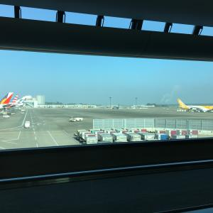 中国南方航空対策講座スタート!!