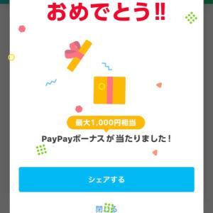 PayPayのキャンペーンが上手く使えばまだまだお得♪7月ラスト〜8月のエステご予約空き状況