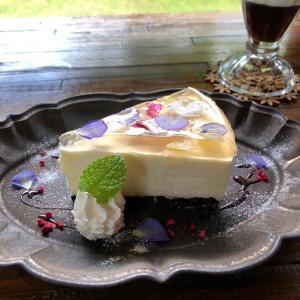 カフェ豆:宝石のようなスイーツ「フラワーレアチーズケーキ」。