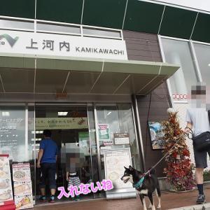 餃子を買って朝食への那須高原夏編