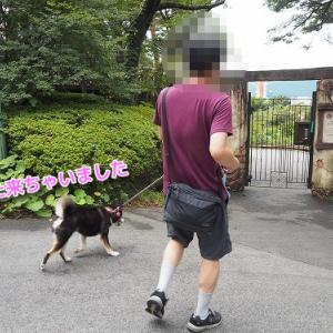 再び参上ハイランドパークの那須高原夏編