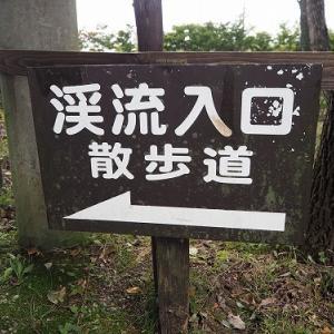 渓流散歩の分かれ道の那須高原秋編