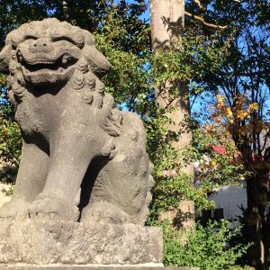 狛犬の鼻の穴に居た予想外の物・・・倶知安神社でクシャミ