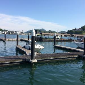 尾道の海とおこぜ🐟小イワシの刺身とベラの塩焼き